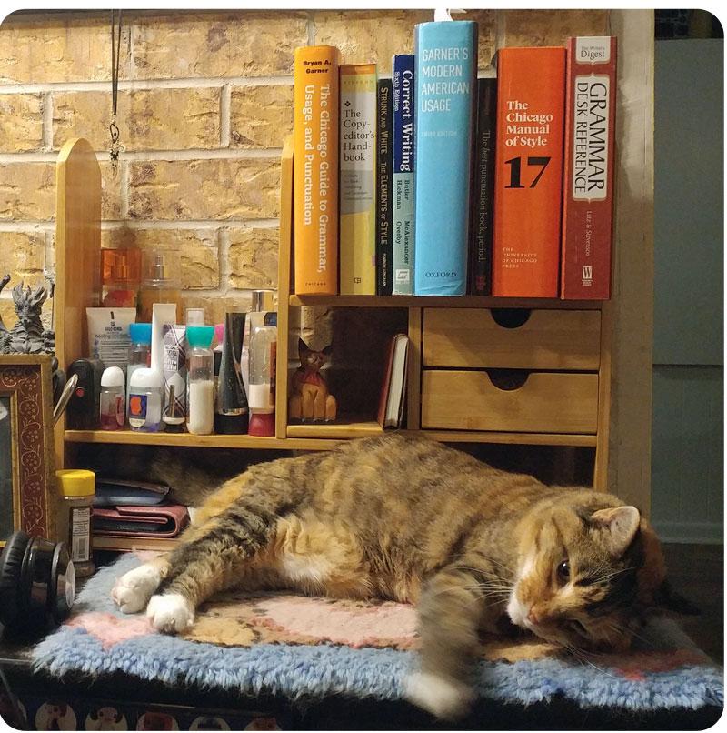 My tortoiseshell cat, Gypsy, lounging on my desk.